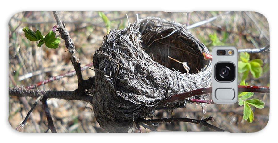 Close Up Galaxy S8 Case featuring the photograph Bird Nest In Wild Rose Bush by Kent Lorentzen