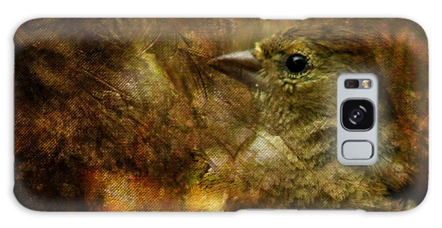 Sparrow Galaxy S8 Case featuring the photograph Birds by Angel Ciesniarska