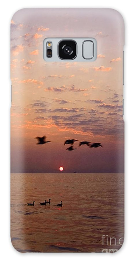 Ducks Galaxy S8 Case featuring the photograph Birds Flying And Floating At Sunrise by Sven Brogren