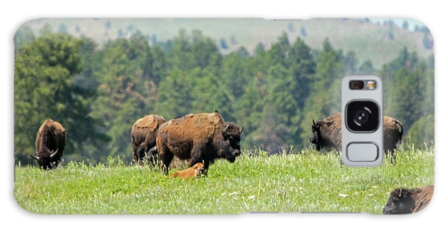 Bison Galaxy S8 Case featuring the photograph Bison Herd by Ira Marcus