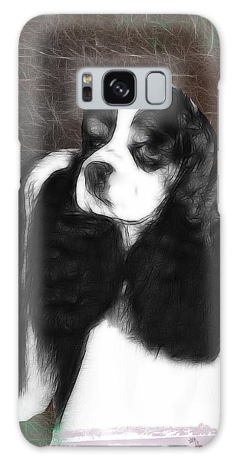 Dog Galaxy S8 Case featuring the photograph Black And White Cookie by Ericamaxine Price