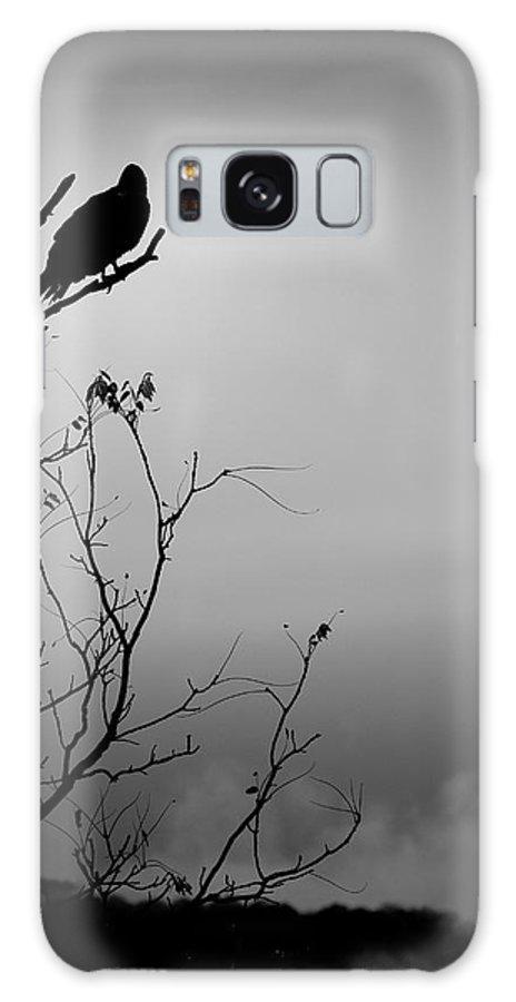 Black Galaxy S8 Case featuring the photograph Black Buzzard 7 by Teresa Mucha