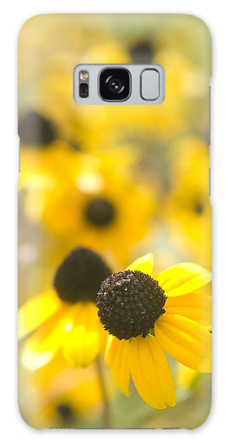 Flowers Galaxy S8 Case featuring the photograph Black Eyed Susans by Steve Somerville