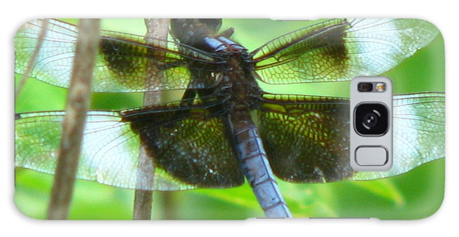 Dragonfly Galaxy S8 Case featuring the photograph Black Wing by Paul Slebodnick