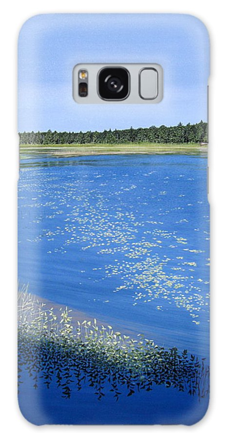 Landscapes Galaxy S8 Case featuring the painting Blackstone Bog by Kenneth M Kirsch