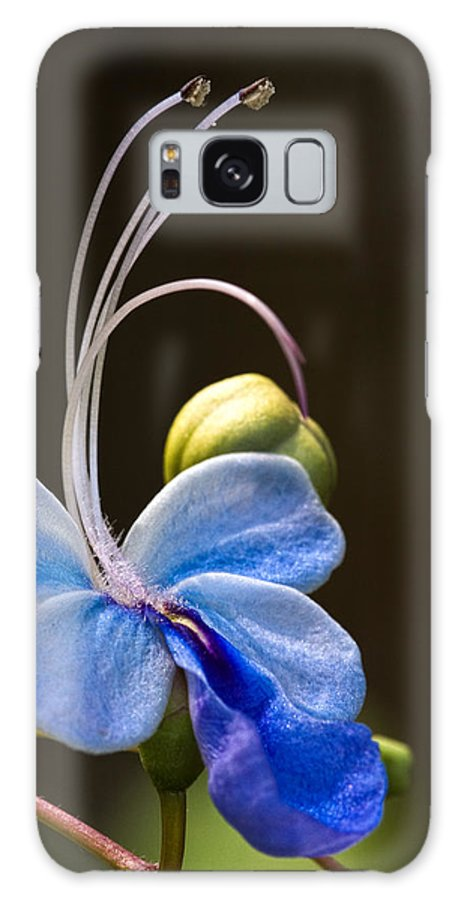Flower Galaxy S8 Case featuring the photograph Blooming Butterfly by Christopher Holmes