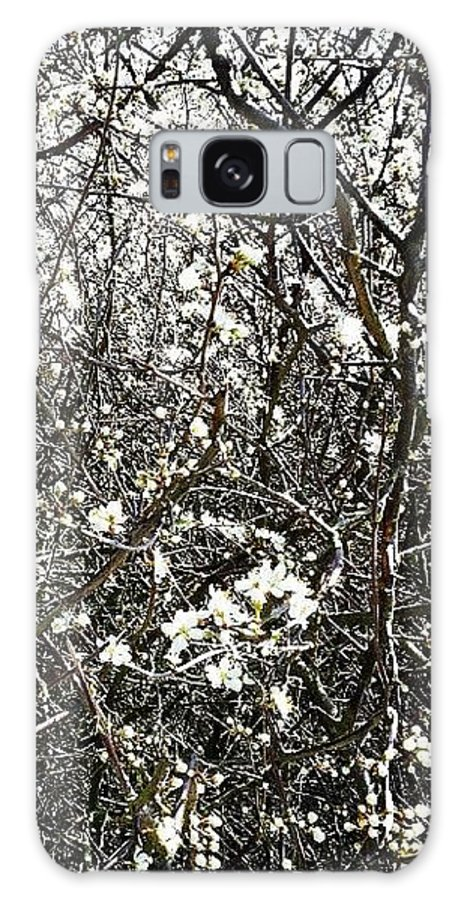 Blossom Galaxy Case featuring the photograph Blossomarama by Nic Squirrell