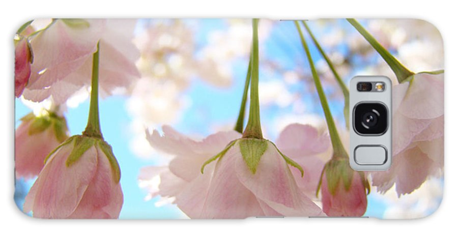 �blossoms Artwork� Galaxy S8 Case featuring the photograph Blossoms Art Prints 52 Pink Tree Blossoms Nature Art Blue Sky by Baslee Troutman