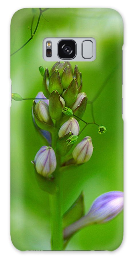Nature Galaxy S8 Case featuring the photograph Blossom Dream by Ben Upham III