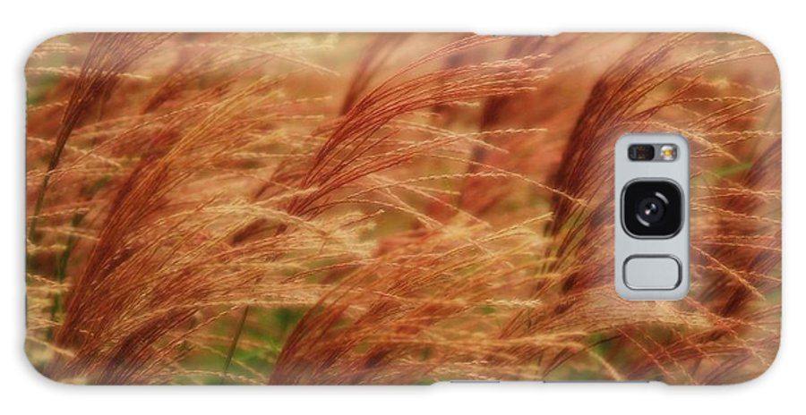 Win Galaxy Case featuring the photograph Blowing In The Wind by Gaby Swanson