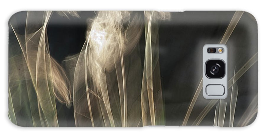 Blowing In The Wind Galaxy S8 Case featuring the photograph Blowing In The Wind by Roger Mullenhour