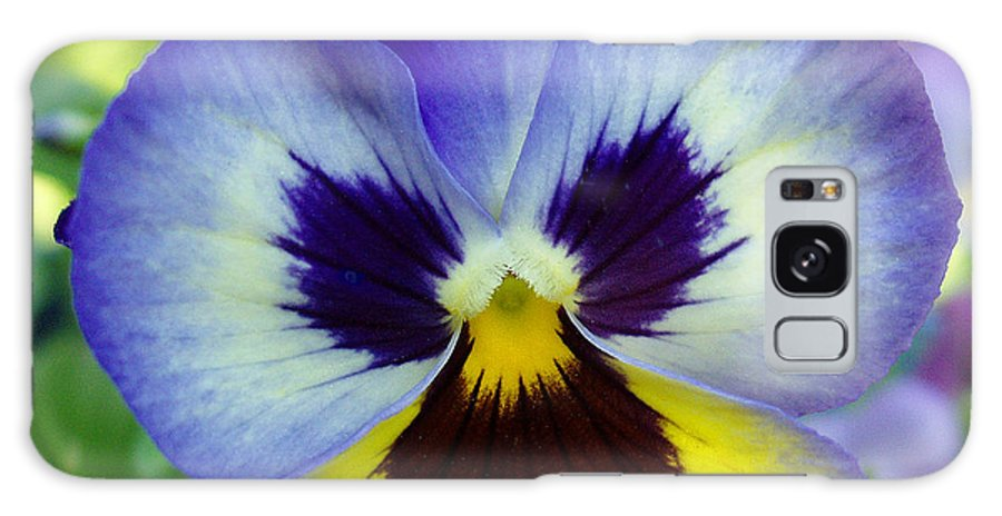 Flowers Galaxy S8 Case featuring the photograph Blue And Yellow Pansy by Nancy Mueller