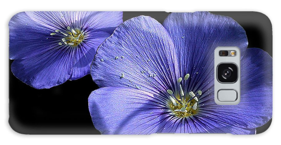 Flowers Galaxy Case featuring the photograph Blue Bells by Evelyn Patrick
