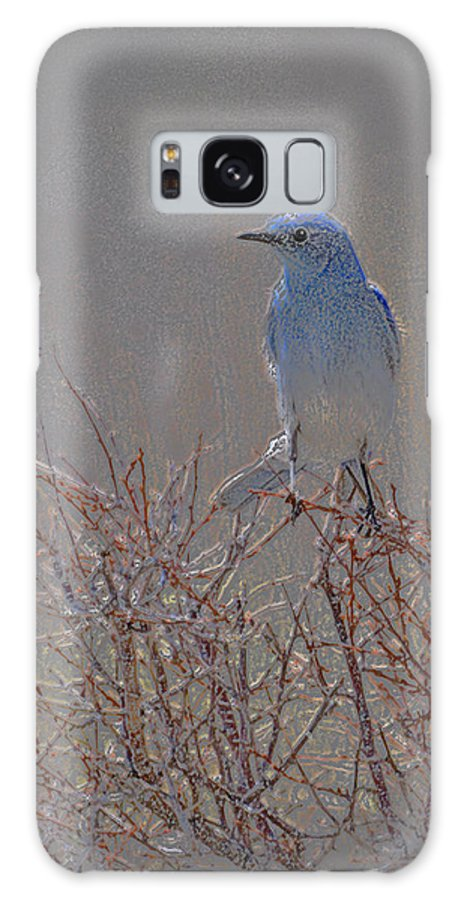 Colored Pencil Galaxy S8 Case featuring the photograph Blue Bird Colored Pencil by Heather Coen