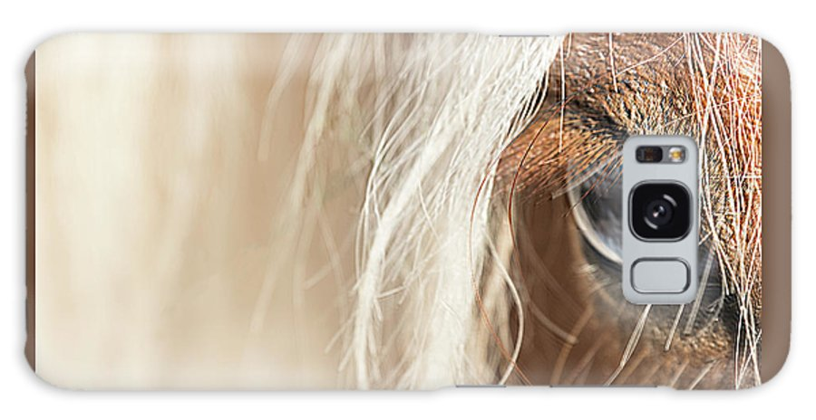 Horse Galaxy S8 Case featuring the photograph Blue Eyed Horse by Kathryn Bell