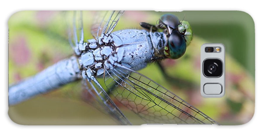 Dragonfly Galaxy S8 Case featuring the photograph Blue Eyes by Paul Slebodnick