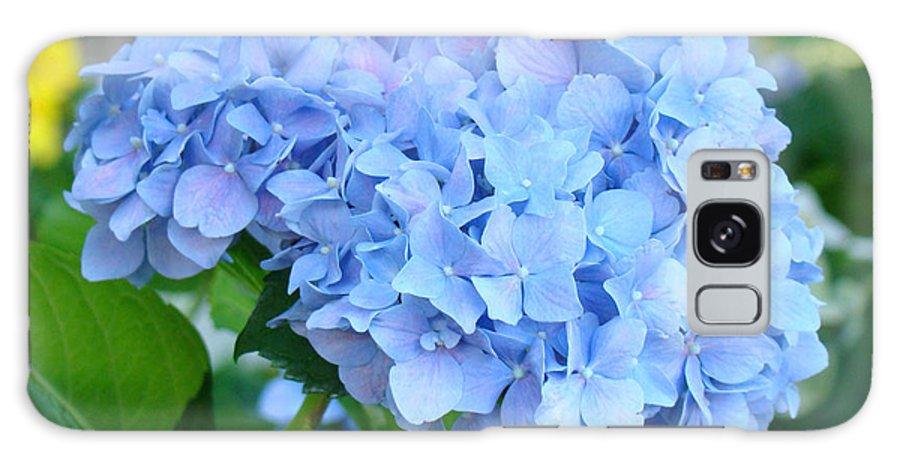 Hydrangea Galaxy S8 Case featuring the photograph Blue Hydrangea Flowers Art Botanical Nature Garden Prints by Baslee Troutman