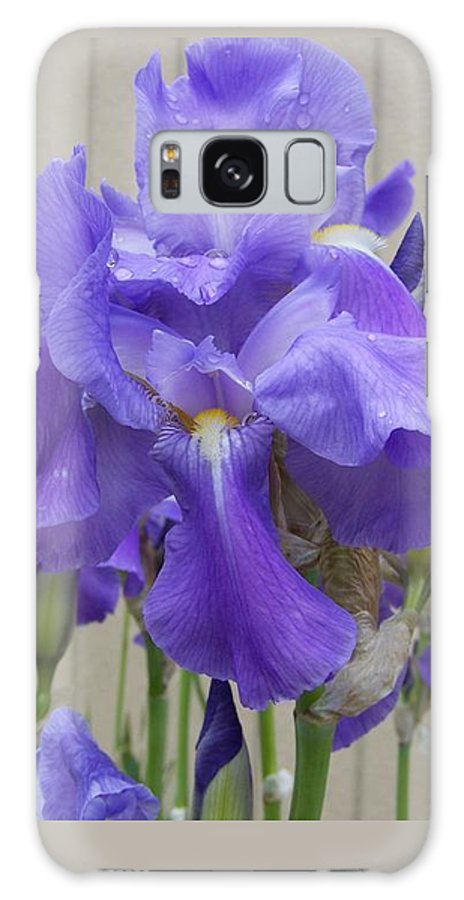 Flowers Galaxy Case featuring the photograph Blue Iris by Laurie Kidd