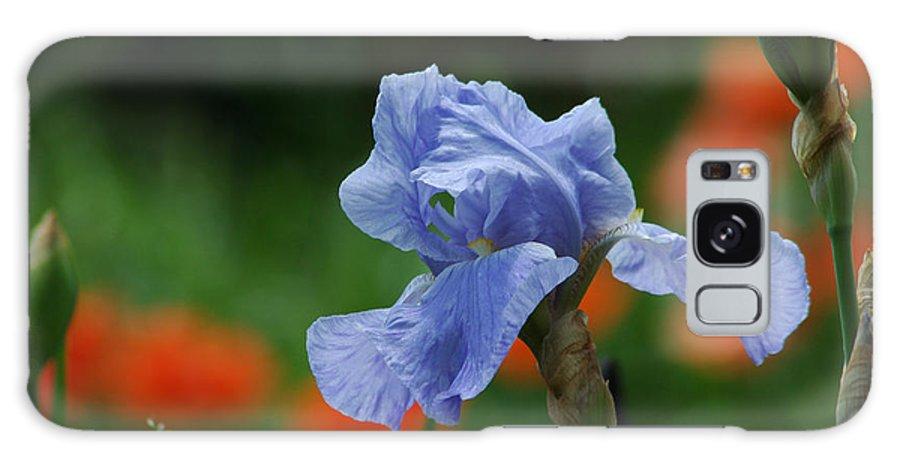 Iris Galaxy S8 Case featuring the photograph Blue Iris by Linda Murphy