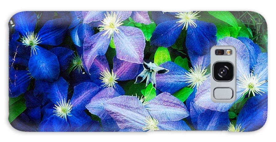 Flowers Galaxy S8 Case featuring the photograph Blue by Matt Suess