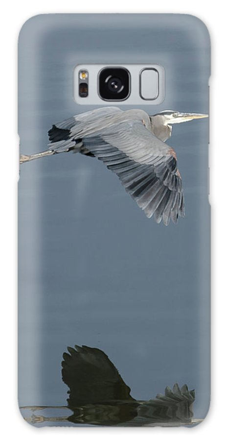 Nature Galaxy S8 Case featuring the photograph Blue On Blue by Steve Marler