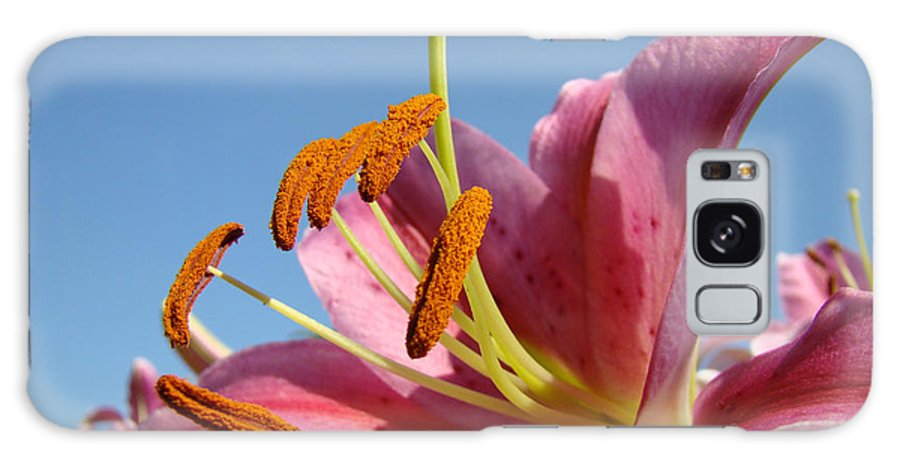 Lilies Galaxy S8 Case featuring the photograph Blue Sky Florals Art Pink Calla Lily Blooming Baslee Troutman by Baslee Troutman