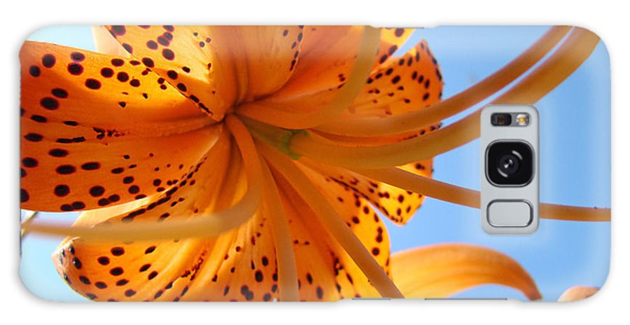 Lilies Galaxy S8 Case featuring the photograph Blue Sky Sunshine Tiger Lily Flowers Giclee Prints Baslee Troutman by Baslee Troutman