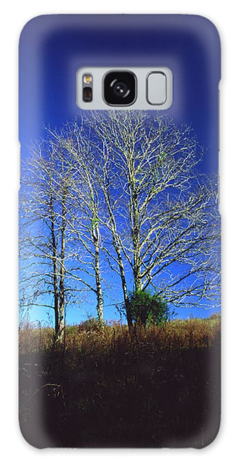 Landscape Galaxy Case featuring the photograph Blue Tree In Tennessee by Randy Oberg