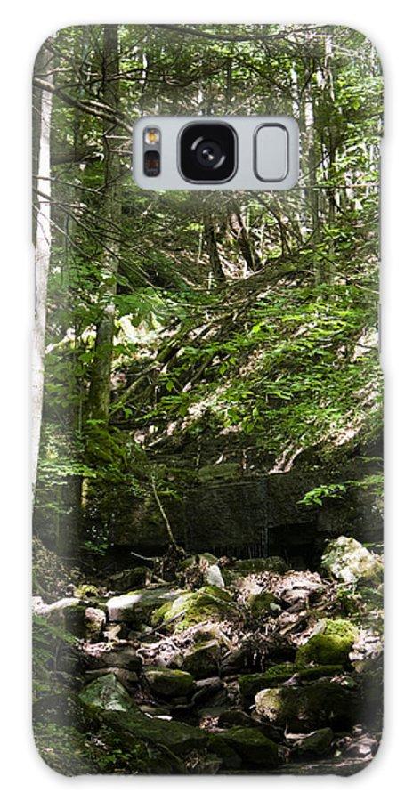 Bluestone Galaxy S8 Case featuring the photograph Bluestone State Park Mountain Stream West Virginia by Teresa Mucha
