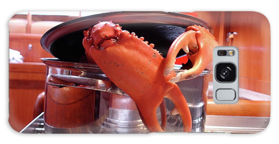 Crab Galaxy S8 Case featuring the photograph Boiled Crab by Chad Natti