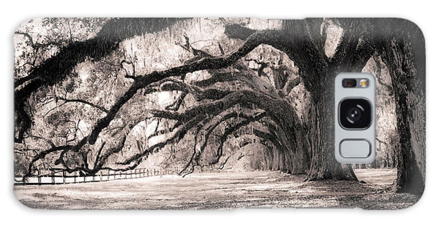 Boone Hall Galaxy S8 Case featuring the photograph Boone Hall Plantation Live Oaks by Dustin K Ryan