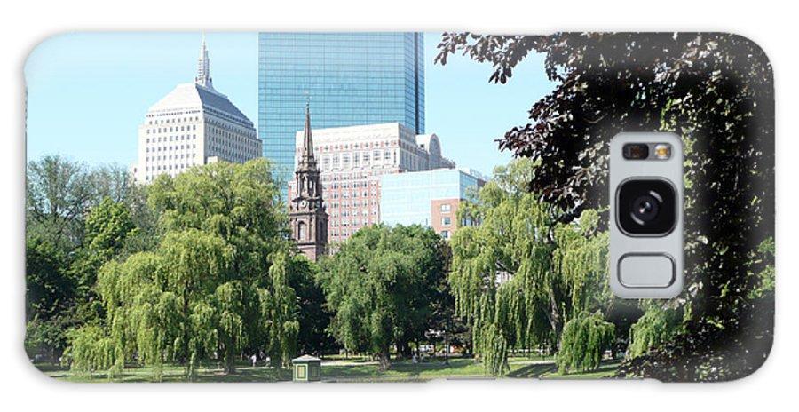 Garden Galaxy Case featuring the photograph Boston Public Garden by Kathy Schumann