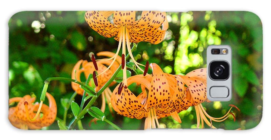Lilies Galaxy S8 Case featuring the photograph Botanical Master Gardens Art Prints Orange Tiger Lilies Baslee Troutman by Baslee Troutman