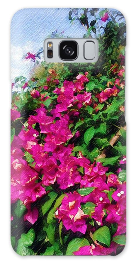 Bougainvillea Galaxy S8 Case featuring the photograph Bougainvillea by Sandy MacGowan