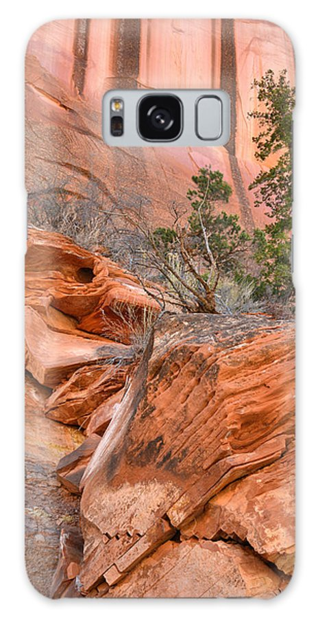 Grand Staircase Escalante National Monument Galaxy S8 Case featuring the photograph Boulder-notom Road Varnish by Ray Mathis