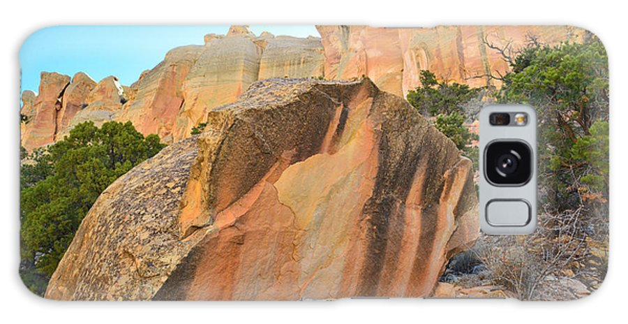 Grand Staircase Escalante National Monument Galaxy S8 Case featuring the photograph Boulder-notom Varnish by Ray Mathis