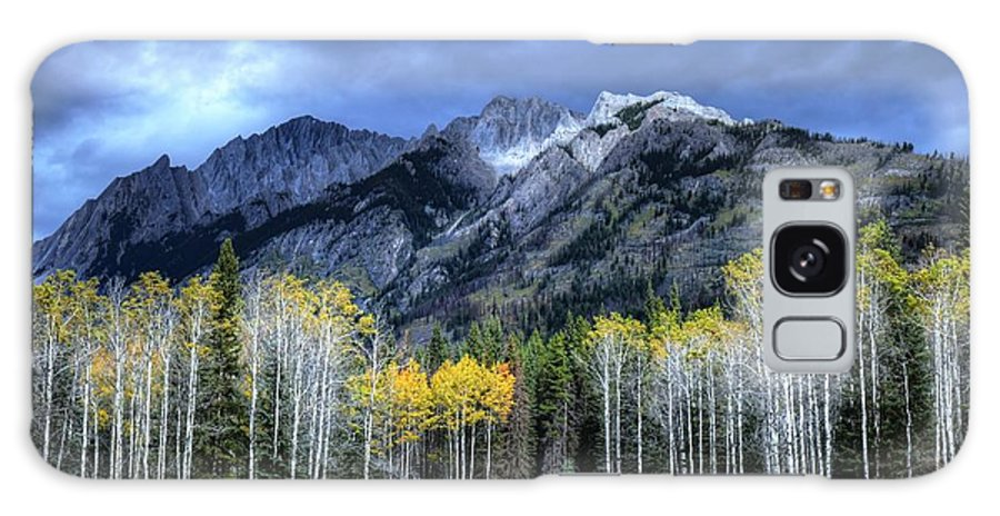 Animals Galaxy S8 Case featuring the photograph Bow Valley Parkway Banff National Park Alberta Canada II by Wayne Moran