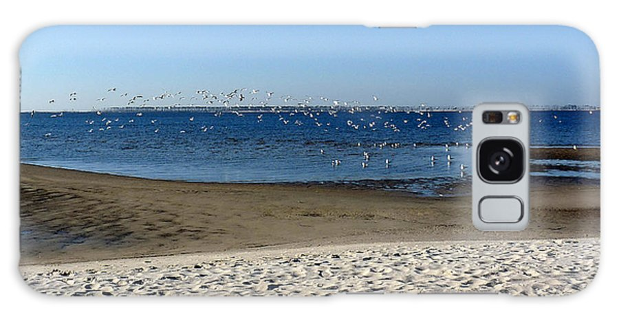 Ocean Springs Mississippi Galaxy S8 Case featuring the photograph Breakfast At The Beach by David Bearden