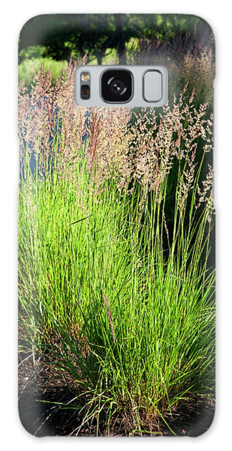 Green Grass Galaxy S8 Case featuring the photograph Bright Green Grass By The Pond by Thomas Habif