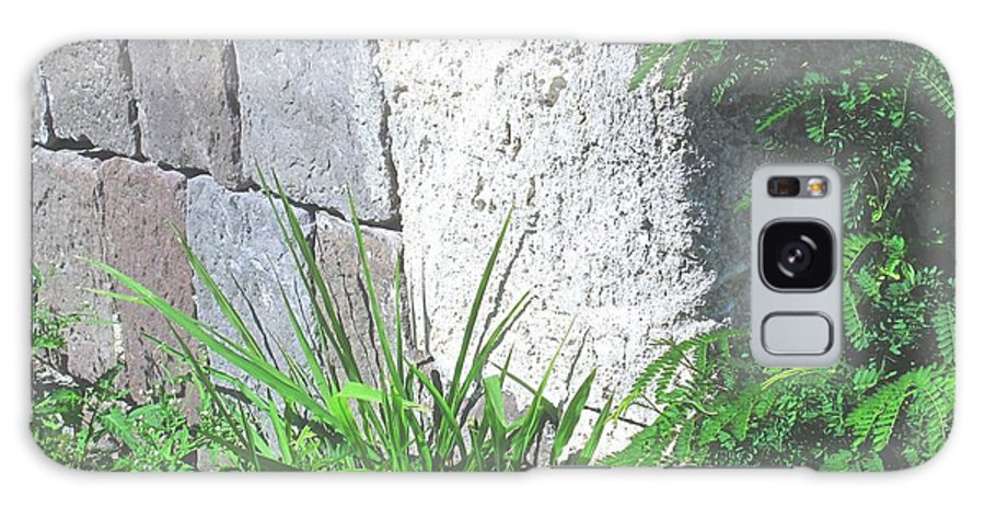 Brimstone Galaxy S8 Case featuring the photograph Brimstone Wall by Ian MacDonald