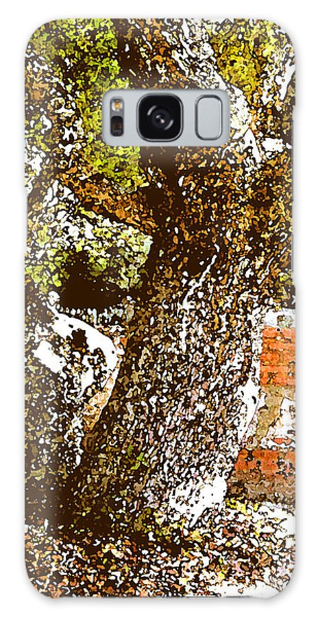Ocracoke Galaxy S8 Case featuring the photograph British Cementary Ocracoke Island Nc by Wayne Potrafka