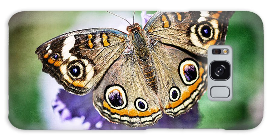 Arizona Galaxy S8 Case featuring the photograph Buckeye Butterfly by Saija Lehtonen