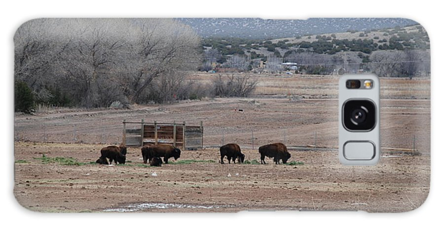 Buffalo Galaxy Case featuring the photograph Buffalo New Mexico by Rob Hans