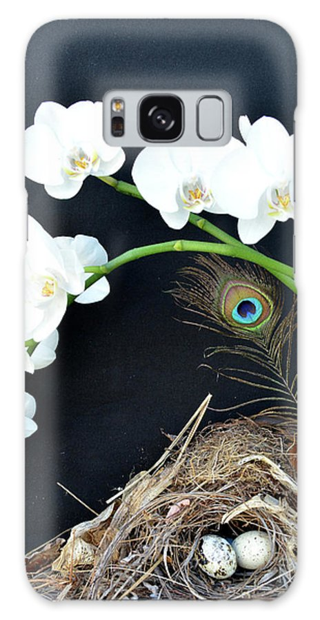Bird Nest Galaxy S8 Case featuring the photograph Building A Little Home 2 by To-Tam Gerwe