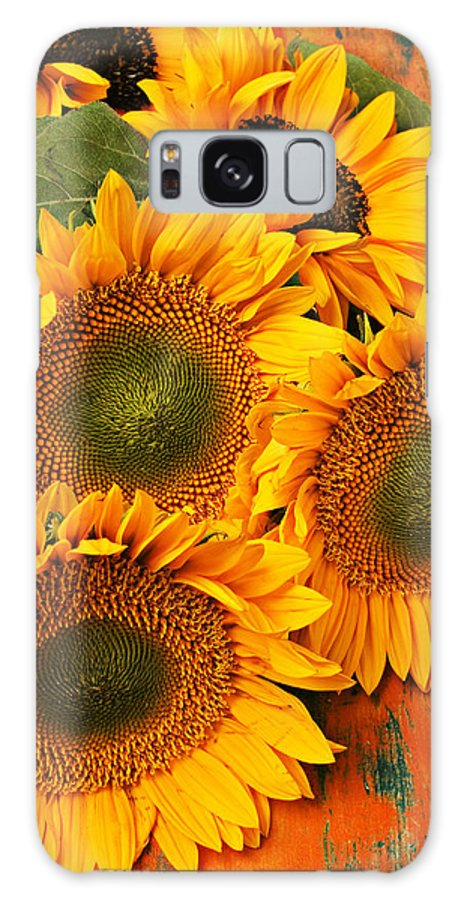 Sunflowers Galaxy S8 Case featuring the photograph Bunch Of Sunflowers by Garry Gay