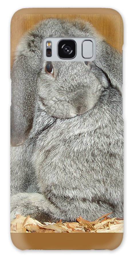 Bunny Galaxy Case featuring the photograph Bunny by Gina De Gorna