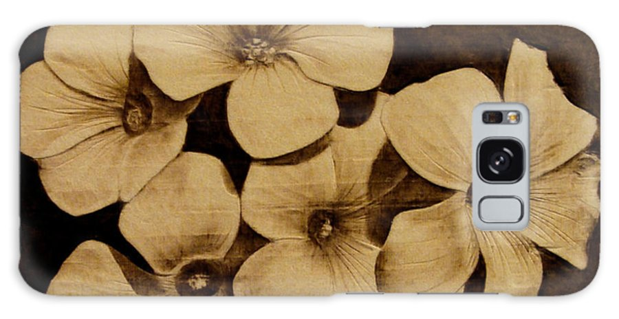 Pyrography; Sepia; Flower; Petals; Boquet; Pansy; Violet; Galaxy Case featuring the pyrography Bursting by Jo Schwartz