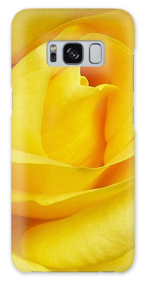 Botanical Galaxy S8 Case featuring the photograph Buttercup Rose by Florene Welebny
