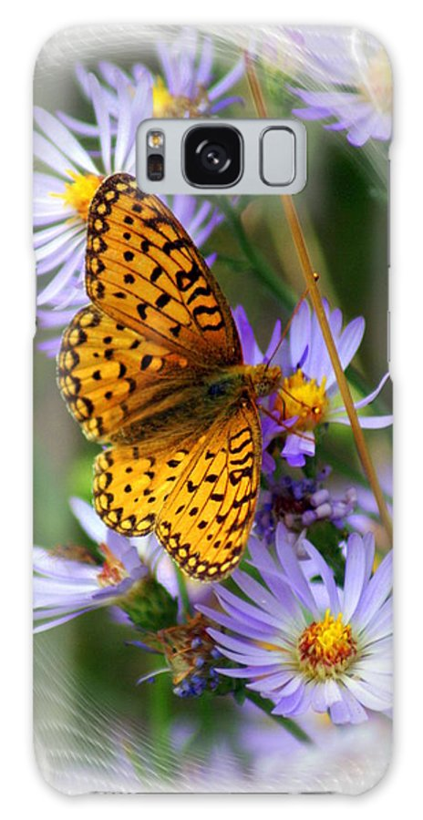 Butterfly Galaxy S8 Case featuring the photograph Butterfly Bliss by Marty Koch