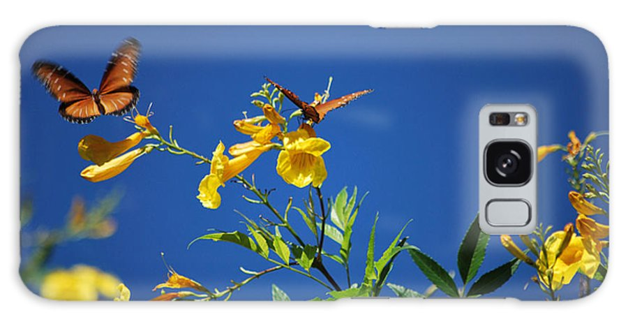 Butterfly Galaxy S8 Case featuring the photograph Butterfly In The Sonoran Desert Musuem by Donna Greene